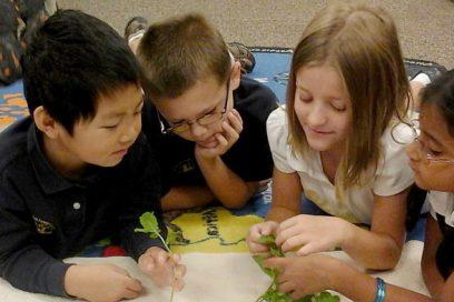 Kids in activity at Montessori Cumming