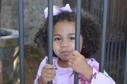 preschool aged child looking through fence